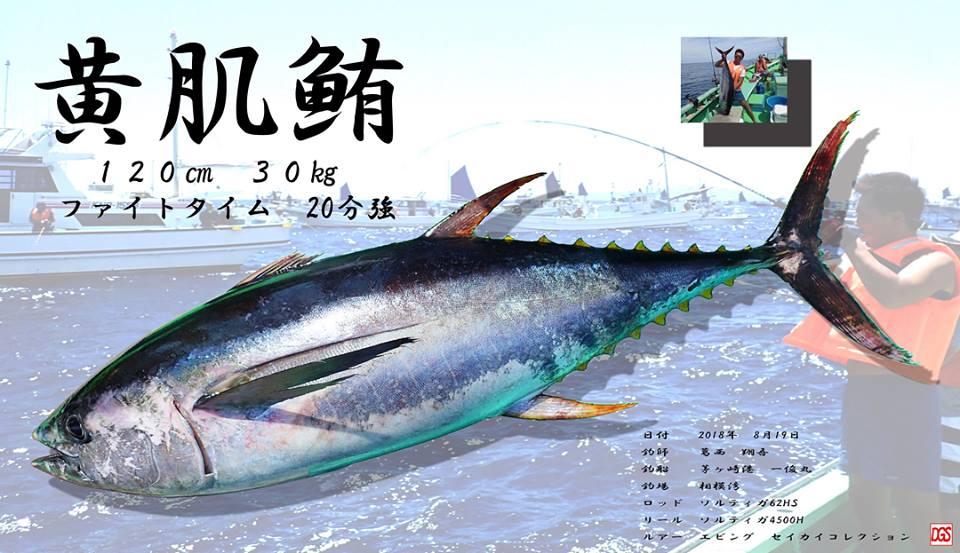 キハダをデジタル魚拓その2